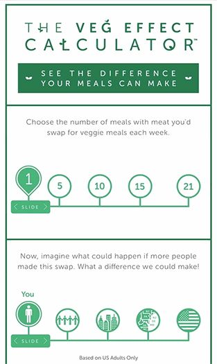 Find out how to veg your way to a waterfall worth of positive change with our Veg Effect Calculator.