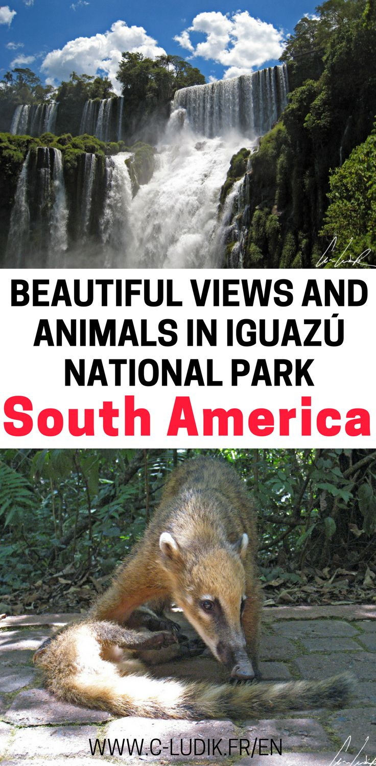 If you find yourself traveling in South America, you MUST stop to see the beautiful waterfalls in Iguazú National Park. These waterfalls are part of a UNESCO heritage site and is one of the largest forest reserves in South America. Come check out why we loved it so much and why you have to see it if you're in South America. Make sure you save these scenic views in South America to your travel board so you can find them later.