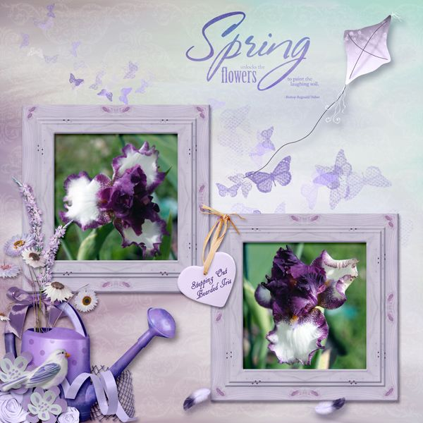 Stepping Out Bearded Iris by Betsyfru. Kit: A Little Taste of Summer by LeaUgoScrap http://scrapbird.com/designers-c-73/k-m-c-73_516/leaugoscrap-c-73_516_300/a-little-taste-of-summer-by-leaugoscrap-blue-bird-mix-match-p-16596.html