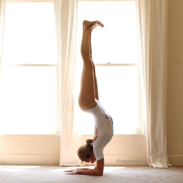 forearm stand, hollow back