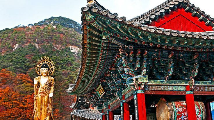 Songnisan National Park, South Korea: Buddha Birthday, Beautiful Spaces, Asia Travel, Buddha Songnisan, Beautiful Places, National Parks, Golden Buddha, Beopjusa Temples, South Korea