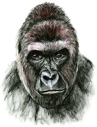 Gorilla Set of 4 Temporary Tattoos (Waterproof Lasts 3 to 4 days)