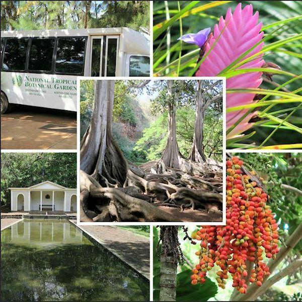 What Movie Was Filmed At Westbury Gardens: 22 Best Botanical & Community Gardens Images On Pinterest