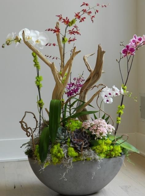 """This approx 20"""" round low profile planter filled with faux orchids and succulents as we ll as driftwood and greens is a true beauty... talk about getting noticed! Would also make an amazing gift! Neve"""