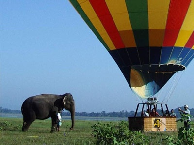 Hor air ballooning in Sri Lanka over Sigiriya