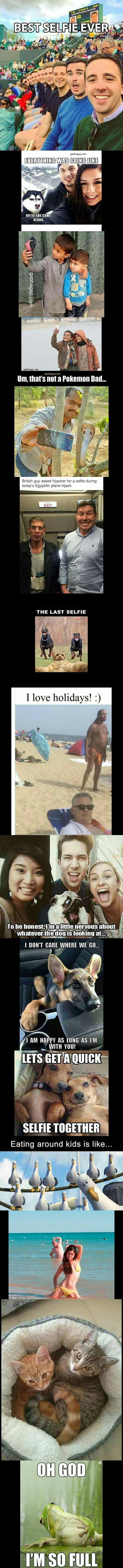 Top 15 Funny Pictures Of The Year