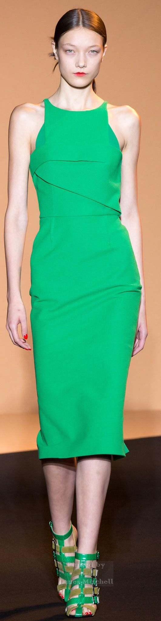 Roland Mouret Collection Spring 2015 Ready-to-Wear