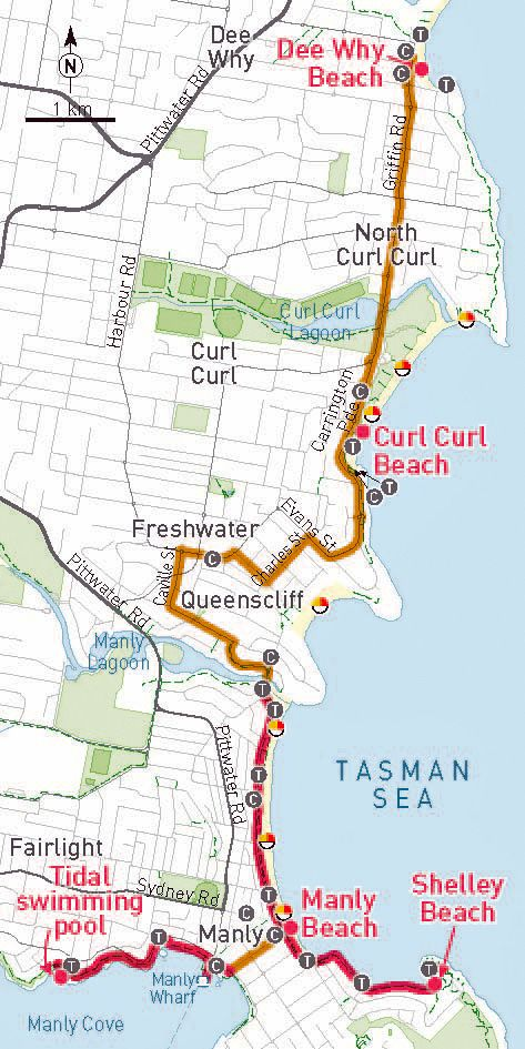 Bike to the Beach Series from Treadlie Magazine - Ride from Manly, Dee Why and Curl Curl in Sydney.  Shelley Beach is well protected for kids.