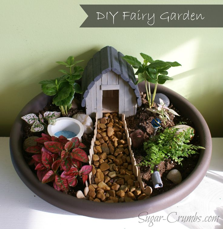 I need to make a mini fairy garden. It would be great in my small apartment!