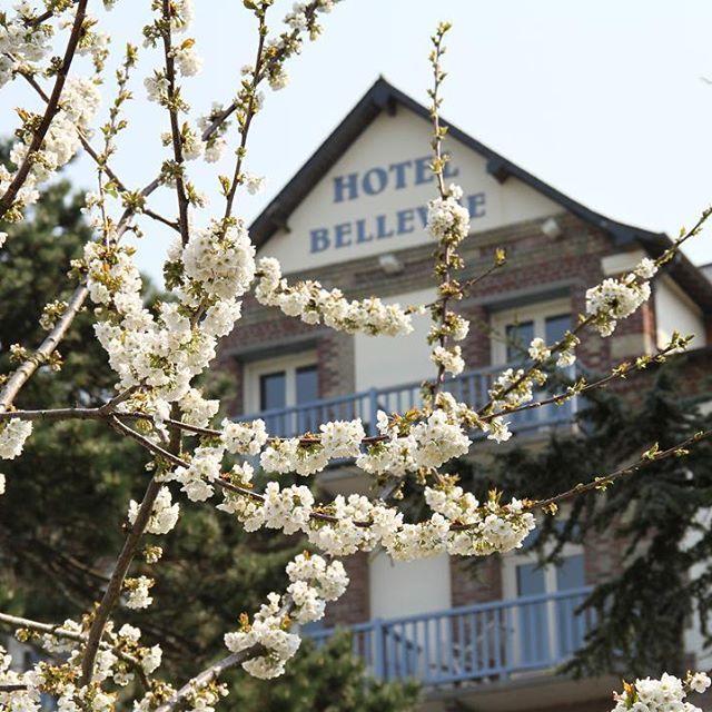 Bienvenue à l'hôtel Le Bellevue - Normandie  #hotel #restaurant #normandie #normandy #fleurs #deauville #honfleur #trouville #borddemer #mer