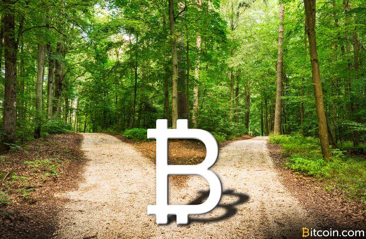 Rozdělený bitcoin čeká mnoho neznámých - Zprávy Krize15