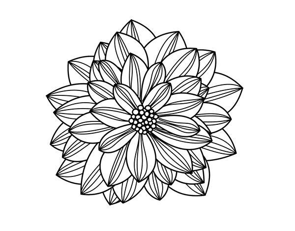 Mejores 44 imgenes de Dibujos de Flores para colorear en