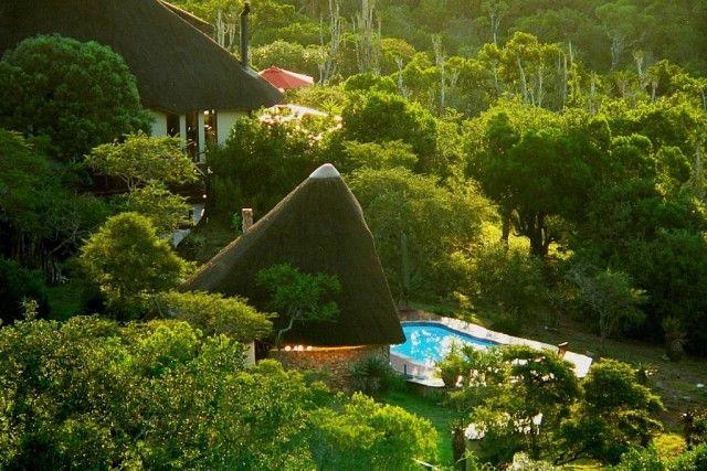 Bush Lodge at Sibuya Game Reserve #KentononSea #EasternCape #SouthAfrica www.sibuya.co.za