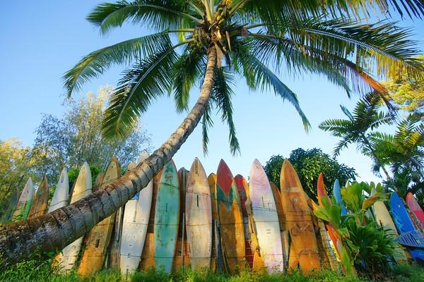 Maui love!