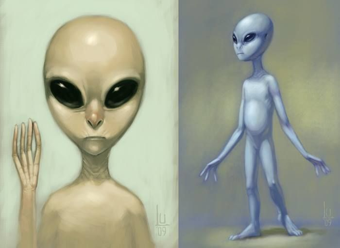 """""""There are many different cultures within the Zeta Reticuli system alone, plus many more throughout the multiverse. It's really only some of the ones from Reticuli, the Zetas, who are still in physical form, particularly the Essassanis, who are hybrids, but also are respected members of the Reticulan culture. The majority of the Greys, as opposed to Zetas, are resonating on higher vibrational frequencies beyond physical form..."""" 