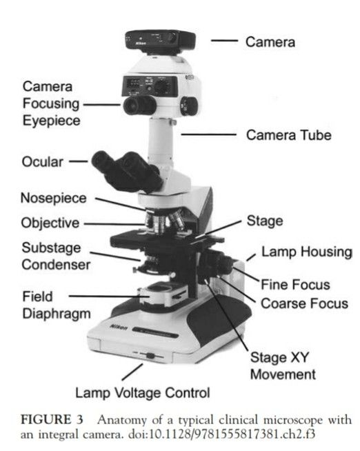 Optical Compound Microscope parts