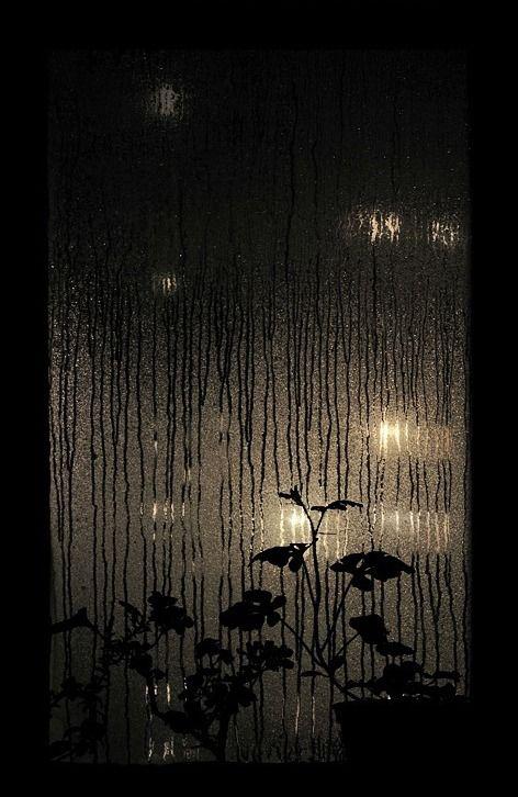 Rainy Night by Dmitry Kozachishin