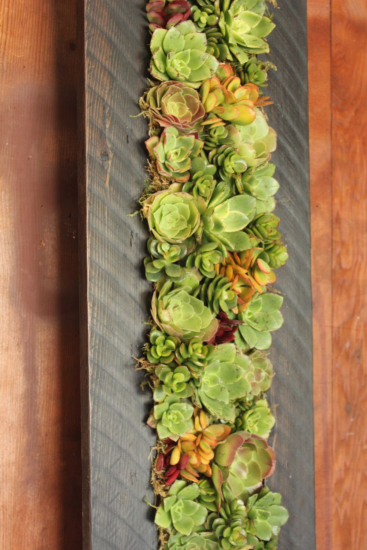 61 best Living walls and Vertical Gardens images on Pinterest ...
