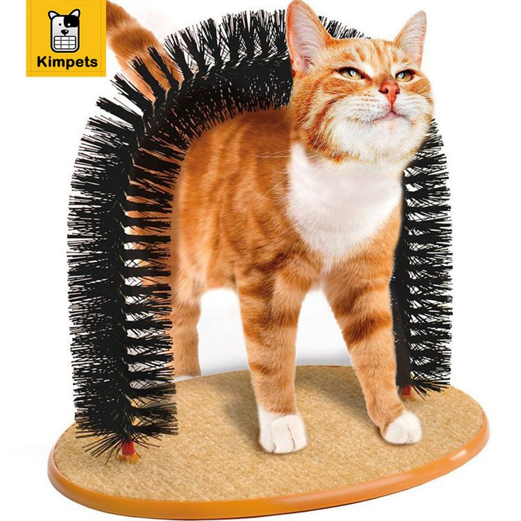 2016 New Arrival Arch Pet Cat Self Groomer With Round Fleece Base Cat Toy Brush Toys For Pets Scratching Devices Free Shipping // FREE Shipping //     Get it here ---> https://thepetscastle.com/2016-new-arrival-arch-pet-cat-self-groomer-with-round-fleece-base-cat-toy-brush-toys-for-pets-scratching-devices-free-shipping/    #dog #dog #puppy #pet #pets #dogsitting #ilovemydog #lovedogs #lovepuppies #hound #adorable #doglover