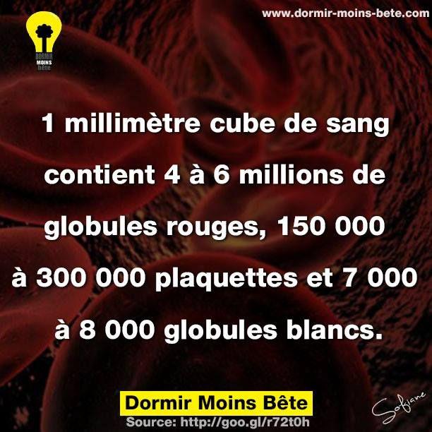 1 millimètre cube de sang contient 4 à 6 millions de globules rouges, 150 000 à 300 000 plaquettes et 7000 à 8000 globules blancs.