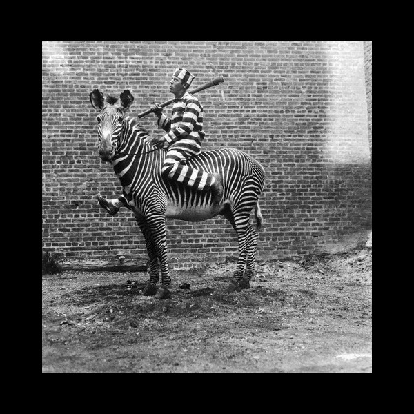 Image result for convict in stripes