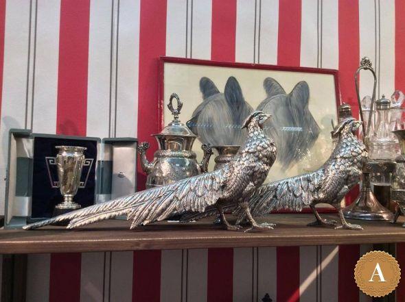 Серебряные фазаны