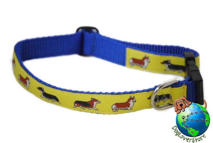 corgi puppy collar size