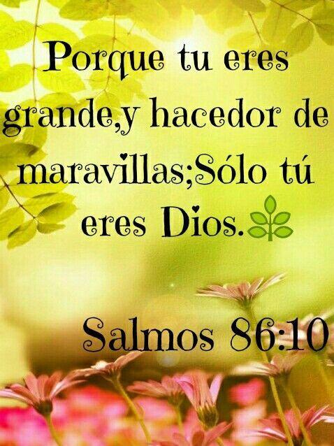 << Porque tu eres grande, y hacedor de maravillas; solo tu eres Dios >>. Salmos 86:10