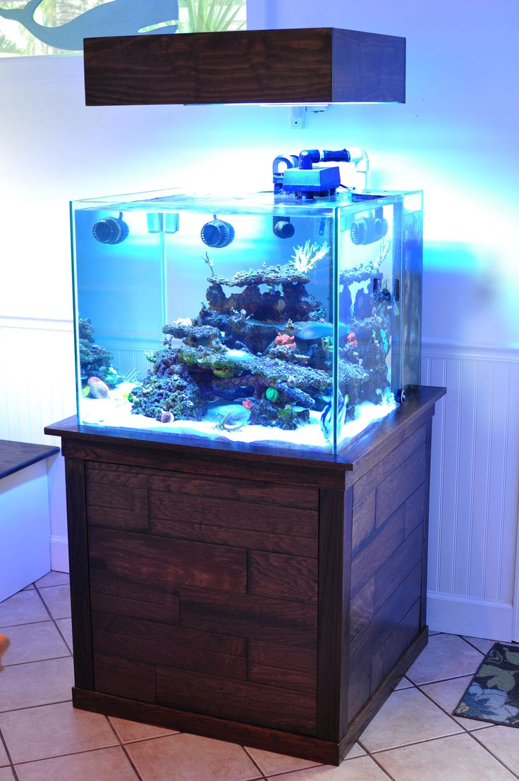 93 cube rimless with a floating canopy recycled wood on for Rimless fish tank
