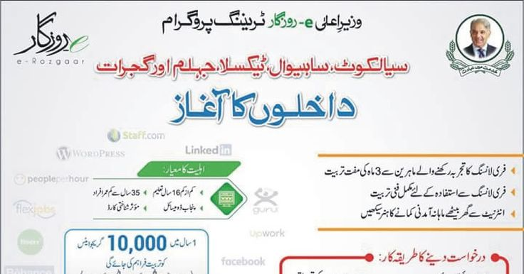 E Rozgar Training in Punjab  Wazir E Ala E Rozgar Training  Apply Online on E Rozgar  E Rozgar Training Program Punjab Apply Online Lear How to Earn Online in Punjab Government Jobs in Punjab 2017 Earn Online  Fresh Jobs in Pakistan Training Course E Rozgar New Jobs in Pakistan for Fresh Masters Paperpk Jobs in Pakistan 2017 Today Jobs in Pakistan as E Rozgar Today News Papers Jobs in Pakistan