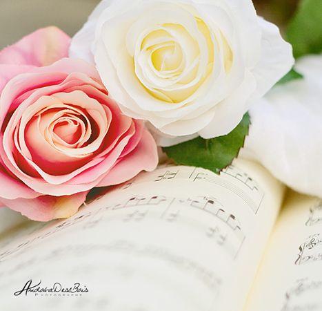 Lovers. by andokadesbois.deviantart.comBeautiful Flower, Andokadesboi Deviantart Com, Pretty Things, Andokadesbois Deviantart Com, Bloom Bouquets, Floral Finess