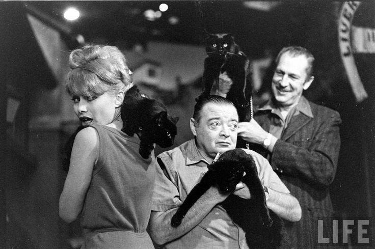 "Joyce Jameson, Peter Lorre, and Vincent Price, auditioning black cats for ""Tales of Terror"" (1962)."