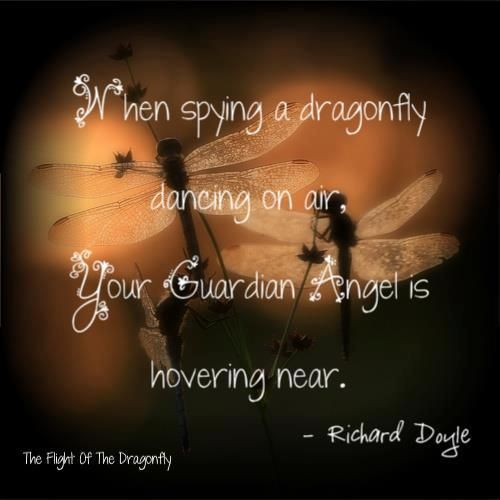 Dragonflies are always near...the perfect sign that you are with us Honey...