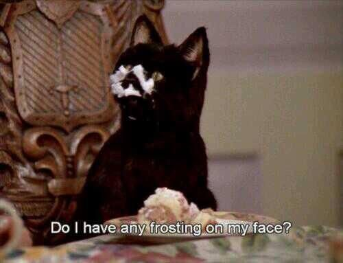 Sabrina, the Teenage Witch. Salem. I don't know why this is making me laugh so much.