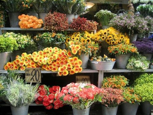 Cheap-flower-shop