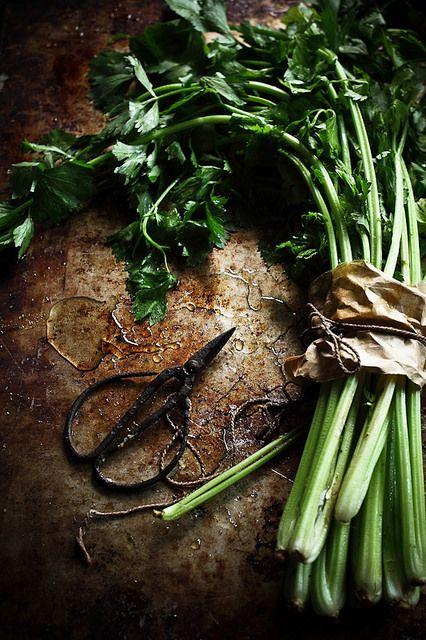 parsley | Flickr - Photo Sharing!