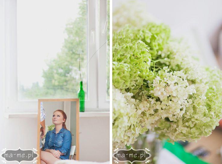 Zielone hortensje/ green hydrangea