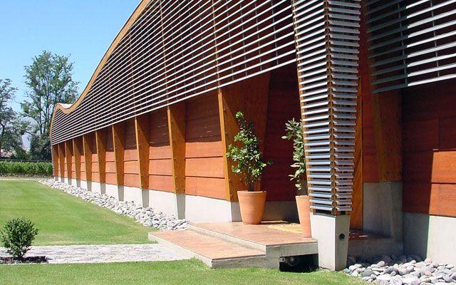 Almaviva Vineyard. Chile