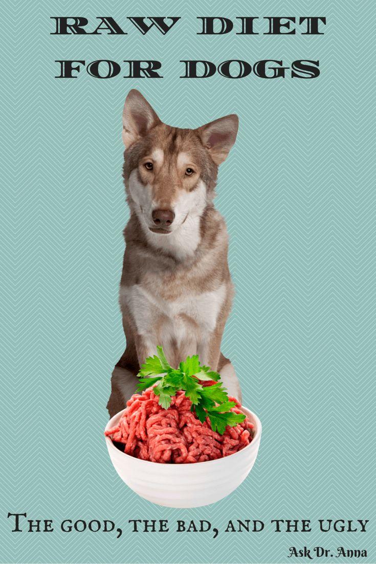 736 best Homemade Pet Food images on Pinterest   Homemade dog food ...