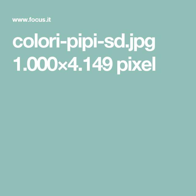 colori-pipi-sd.jpg 1.000×4.149 pixel