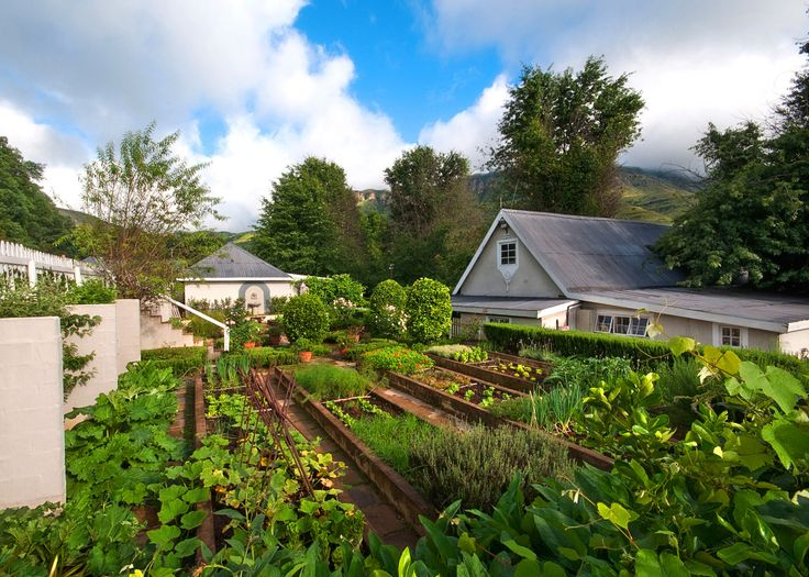 kitchen garden at Cleopatra Mountain Farmhouse