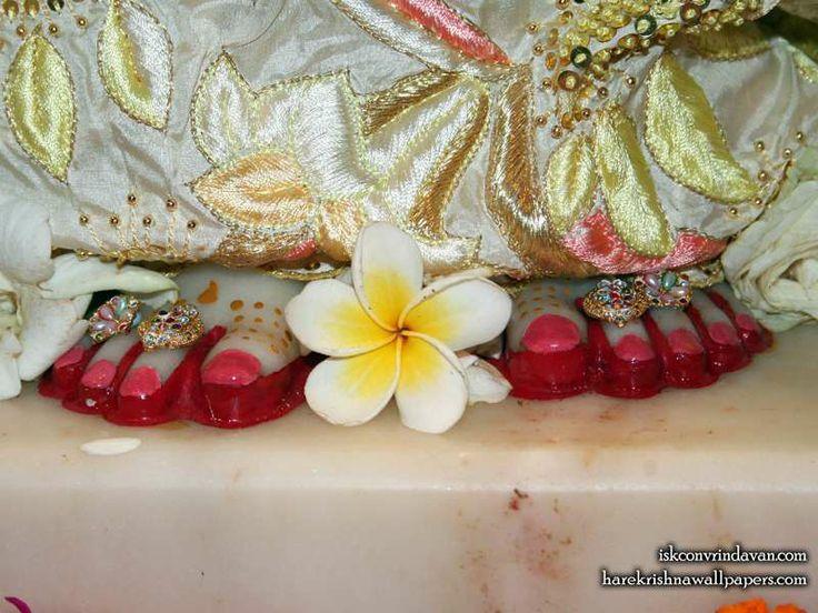 http://harekrishnawallpapers.com/sri-radha-feet-iskcon-vrindavan-wallpaper-002/