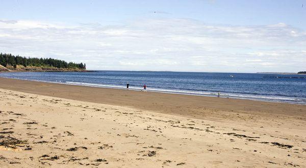 Go beachcombing on Seal Cove Beach on Grand Manan Island.   Fundy Coast, New Brunswick.   Image: Alan McDonald #ExploreNB
