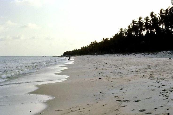 1981: Lamai Beach History of Koh Samui here: https://islandinfokohsamui.com/2016/03/12/samui-history/