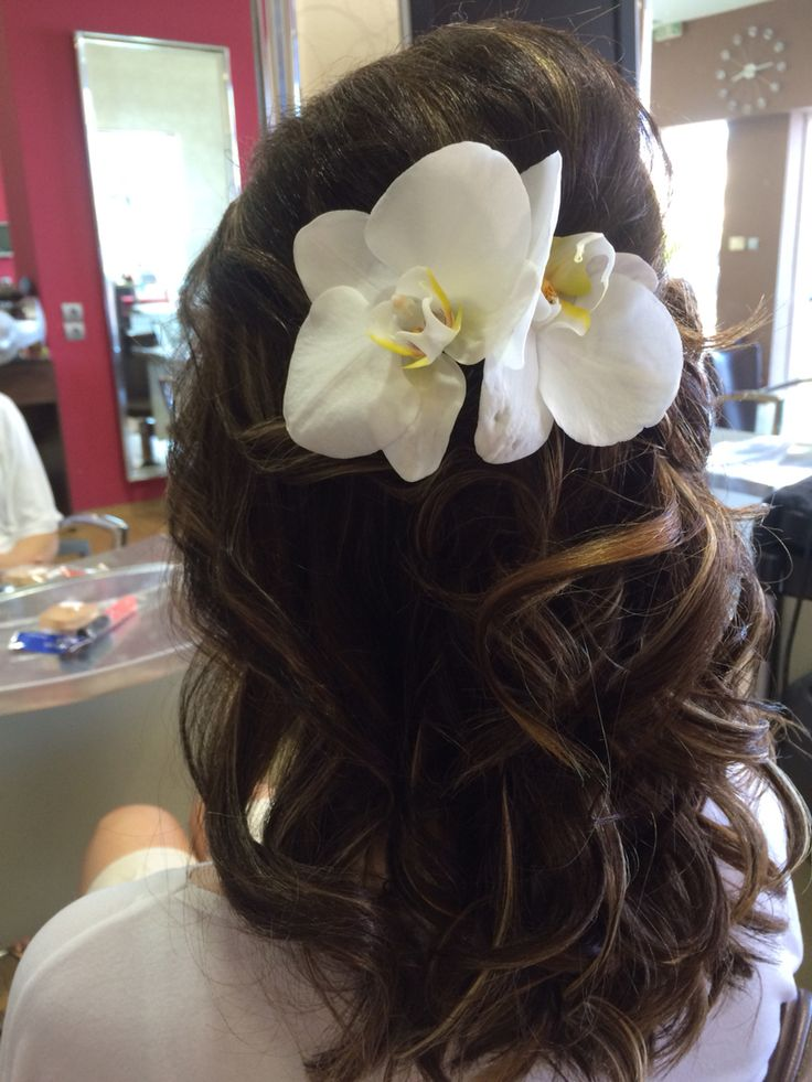 Isidor hairstyle