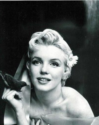 old movie stars photos | Classic Wallpaper on Marilyn Monroe Classic Photoshoot Movie Stars ...