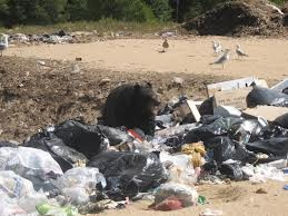 Strong Landfill