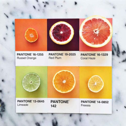 Designer Pairs Different Foods with Their Pantone Swatch Colours
