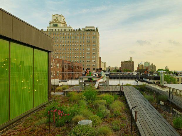 patio taman atap rumah, hubungi 08122938936 untuk langkah pengerjaan sebagai asesoris interior bangunan rumah anda yang sehat dan natural