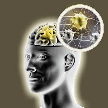 Neuroinflammation i ME/CFS och Fibromyalgi - tryptofan